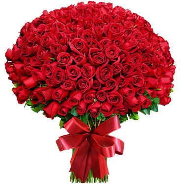 Bouquet de 300 roses rouges