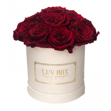 roses eternelles small red